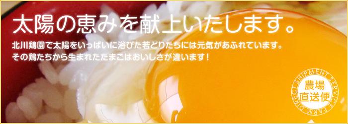 北川鶏園さんホームページ
